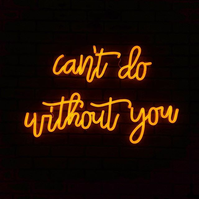 can't do without you neon sign