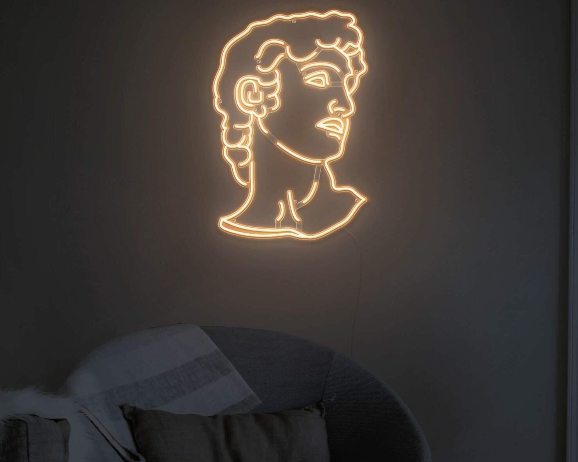 david head led neon light