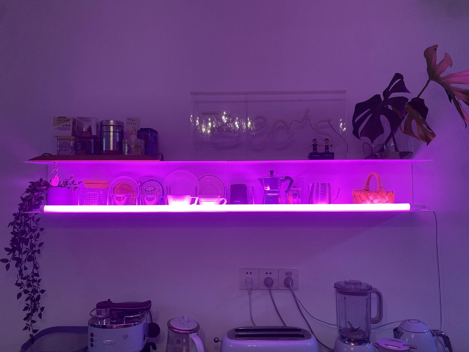 pink neon lamp